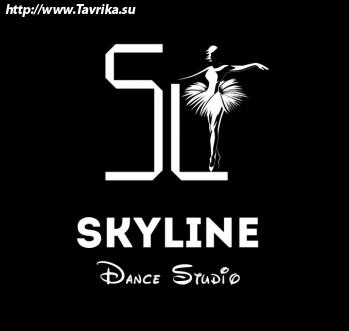 """Хореография для детей и взрослых """"SkyLine Dance Studio"""""""