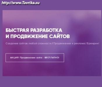 """Веб-Студия """"Vechnost"""""""