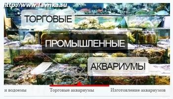"""Зоомагазин """"Скат"""""""