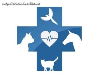 """Ветеринарные услуги """"ВетЛайф"""""""