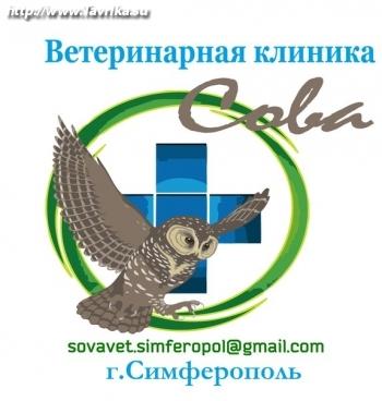 """Ветеринарная клиника """"Сова"""""""