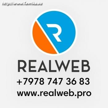 "Интернет-провайдер ""Realweb"""