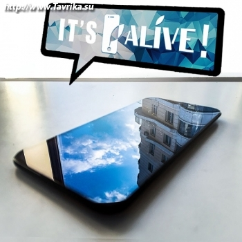"Сервисный центр ""Alive"""