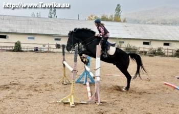 """Конно-спортивный клуб """"Карат"""""""