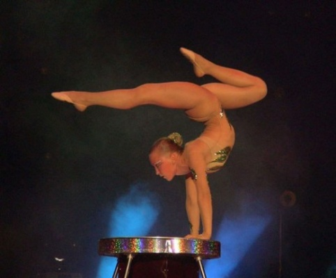 Голые артисты цирка