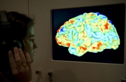 """Ученые впервые создали карту """"центра фантазий"""" в мозге человека"""