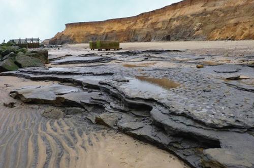 В Великобритании обнаружены следы человека, жившего 800 тысяч лет назад