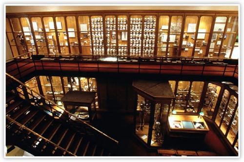 Стамбульский «Музей невинности» назван Европейским музеем года