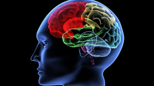 Даже во сне мозг способен решать задачи и распознавать произносимые слова