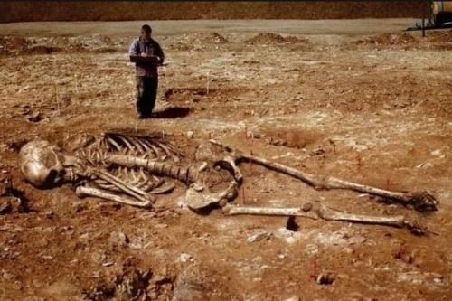 Ученые приступили к изучению загадочных людей-великанов
