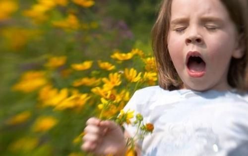 Ученые объяснили происхождение аллергии