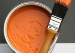 В Англии пройдет чемпионат по наблюдению за сохнущей краской