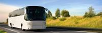 В Керчи заправки оборудуют бесплатными стоянками для туристических автобусов