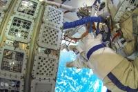 Водоросли из Антарктиды выжили в открытом космосе