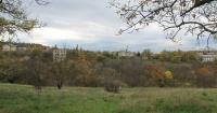 Севастопольцы создали петицию против храма на Ушаковой балке
