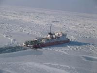 Ледоколы провели через Керченский пролив почти 2000 судов