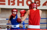 В Евпатории стартовало первенство Республики Крым по боксу