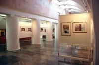 Дебютная выставка 15-летней крымской художницы проходит в Евпатории