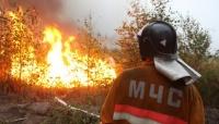 Комплексная тренировка по тушению лесных пожаров пройдет в Крыму