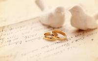 Ялта заняла второе место в Крыму по количеству заключенных браков