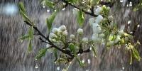 Севастополь накроет самый сильный за последние сто лет майский дождь