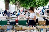 Фестиваль «Книжные аллеи» станет в Крыму ежегодным