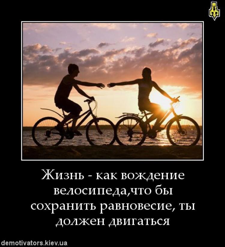 жизнь на велосипеде фото