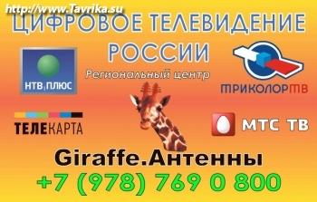 Спутниковое телевидение России